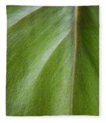 Pothos Detail Fleece Blanket