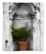 Potted Plant At Villa D'este Near Rome Italy Fleece Blanket