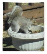 Potted Squirrel Fleece Blanket