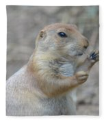 Prairie Dog Cleaning His Teeth Fleece Blanket
