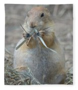 Prairie Dog Food Fleece Blanket