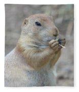 Prairie Dog Treat Fleece Blanket