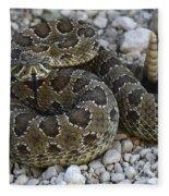 Prairie Rattlesnake South Dakota Badlands Fleece Blanket