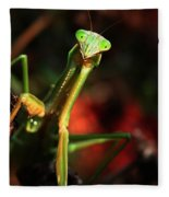 Praying Mantis Portrait Fleece Blanket