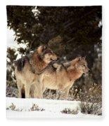 Predators Fleece Blanket