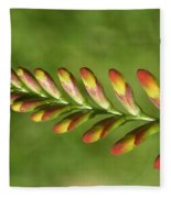 Prehistoric Flower Fleece Blanket