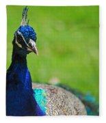 Pretty As A Peacock Fleece Blanket