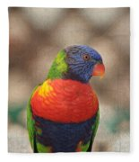 Pretty Bird - Rainbow Lorikeet Fleece Blanket