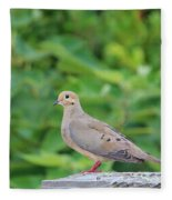 Pretty Dove Fleece Blanket
