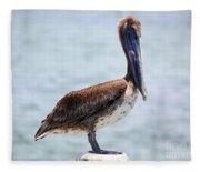 Pretty Gulf Pelican Fleece Blanket