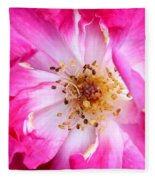 Pretty In Pink Rose Close Up Fleece Blanket