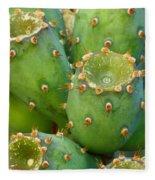 Prickly Pear Cactus 2am-105306 Fleece Blanket