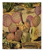 Prickly Pear Cactus Dsc08545 Fleece Blanket