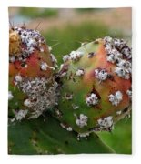 Prickly Pear With Cochineal Bugs Fleece Blanket