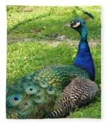 Pride Of Peacock Fleece Blanket