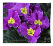 Primrose Purple Fleece Blanket