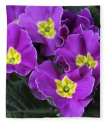 Primrose Purple Fleece Blanket