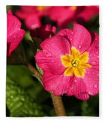 Primulas Fleece Blanket