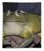 Prince Frog Hands Fleece Blanket