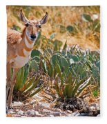 Pronghorn Antelope Fleece Blanket