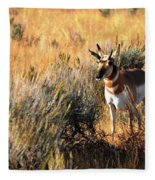 Pronghorn Buck Fleece Blanket
