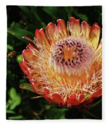 Protea Flower 2 Fleece Blanket