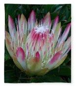 Protea Flower Fleece Blanket