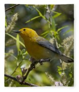 Prothonotary Warbler Dsb220 Fleece Blanket