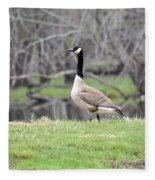 Proud Goose Fleece Blanket