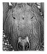 Przewalski's Horse Fleece Blanket
