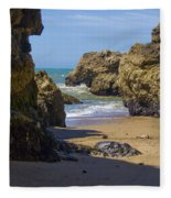Pt Reyes National Seashore Fleece Blanket
