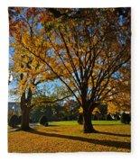Public Garden Fall Tree Fleece Blanket
