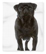 Pug Dog Fleece Blanket