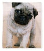 Pug Puppy Dog Fleece Blanket