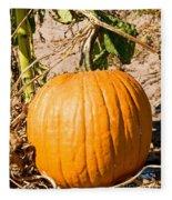Pumpkin Growing In Pumpkin Field Fleece Blanket