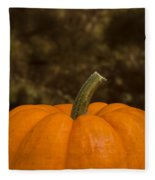 Pumpkin Macro 4 B Fleece Blanket