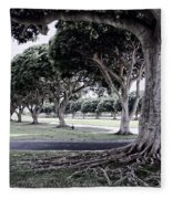 Punchbowl Cemetery - Hawaii Fleece Blanket