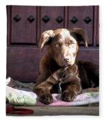 Pup Fleece Blanket