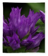 Puple Passion Fleece Blanket