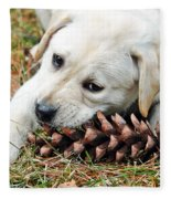 Puppy With Pine Cone Fleece Blanket