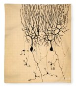 Purkinje Cells By Cajal 1899 Fleece Blanket