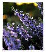 Purple 29987 Fleece Blanket