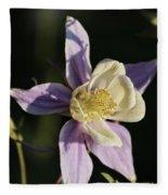 Purple And Cream Columbine Flower Fleece Blanket