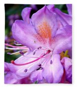 Purple Azalea Fleece Blanket
