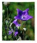 Purple Balloon Flower Fleece Blanket
