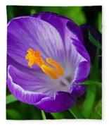 Purple Crocus Fleece Blanket
