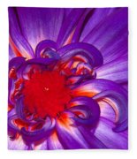 Purple Dahlia Fleece Blanket