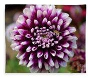 Purple Dahlia White Tips Fleece Blanket