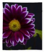 Purple Daisy Fleece Blanket