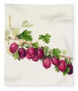 Purple Gooseberry Fleece Blanket